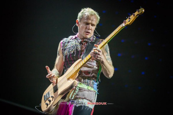 Concert, rock, funk, 2016, red hot chili, peppers, bercy