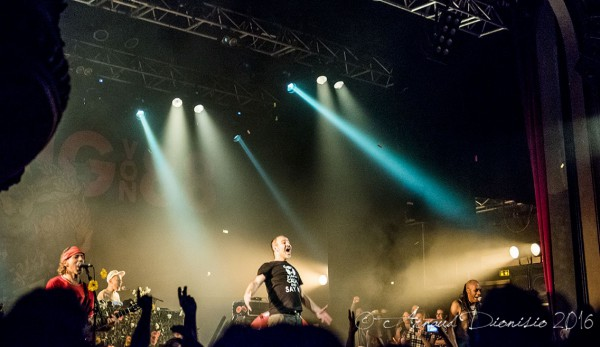Concert, Punk, Retour, Houlala, 2016
