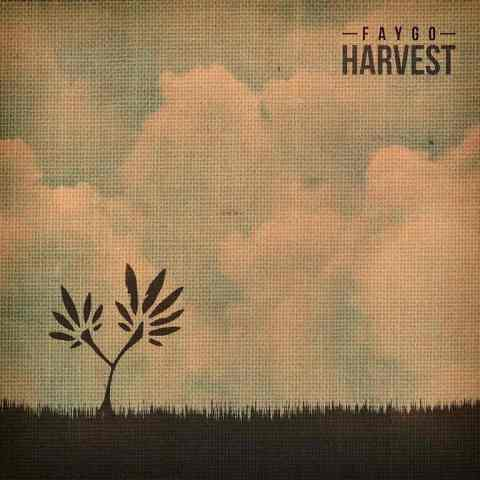 Faygo - Harvest Front