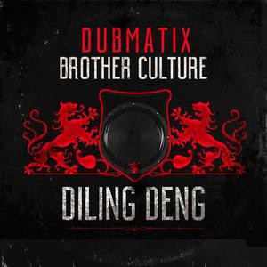 Dubmatix & Brother Culture