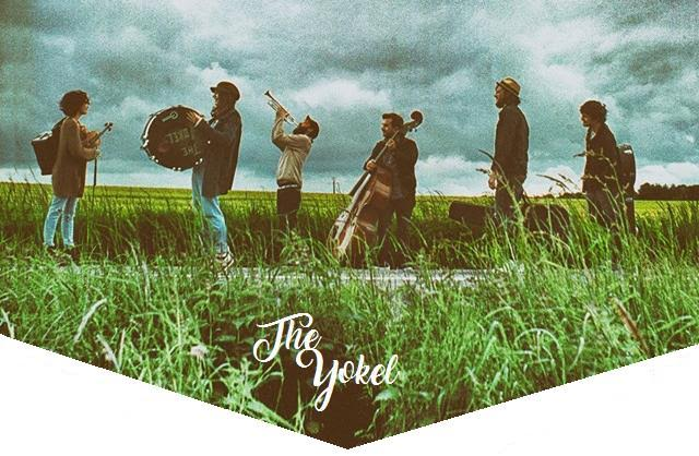 bluegrass, single, nouvel album, Here Comes the wild, the yokel