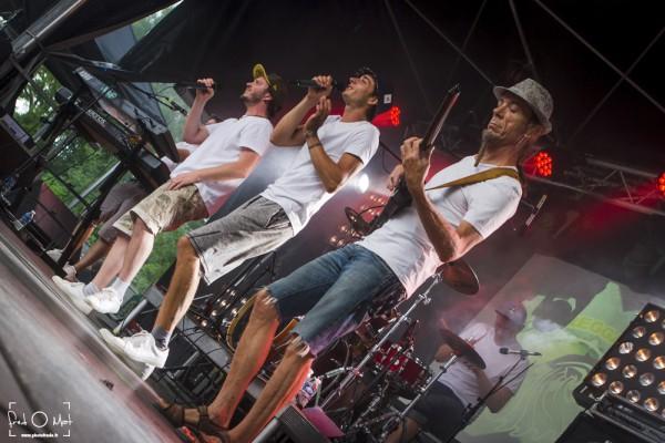 nomade reggae festival, frangy, feuilles de roots
