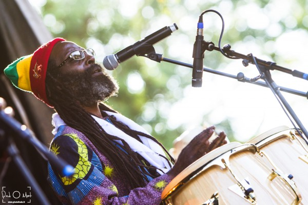 black roots, nomade reggae festival, frangy