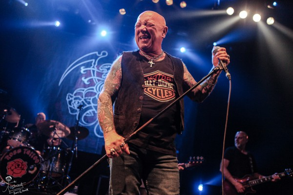rose tattoo, ac/dc, live, angry anderson, mark evans