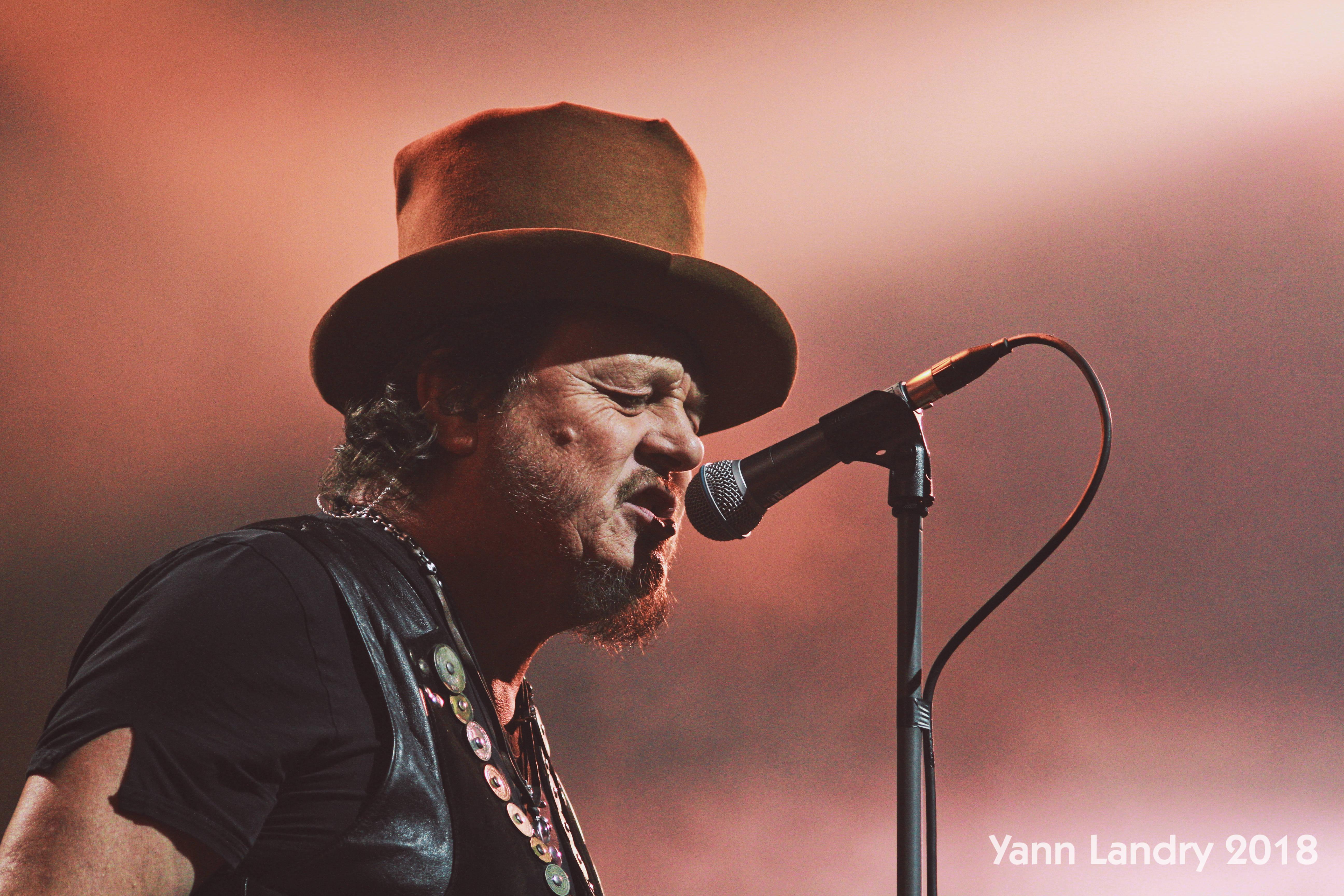 joli chapeau, #faislatronche, Yann Landry, POP