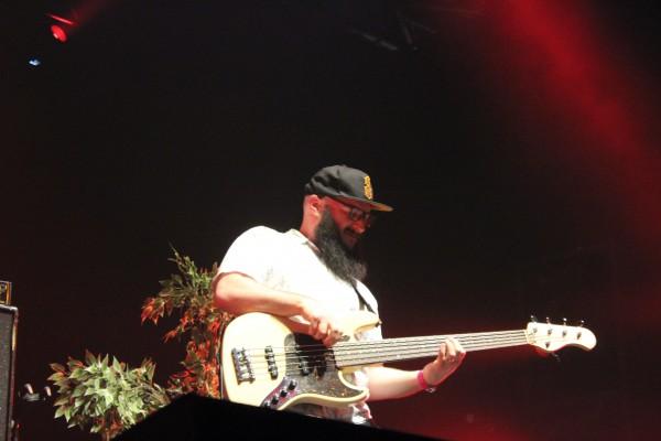 The Skints au Baco Reggae Festival