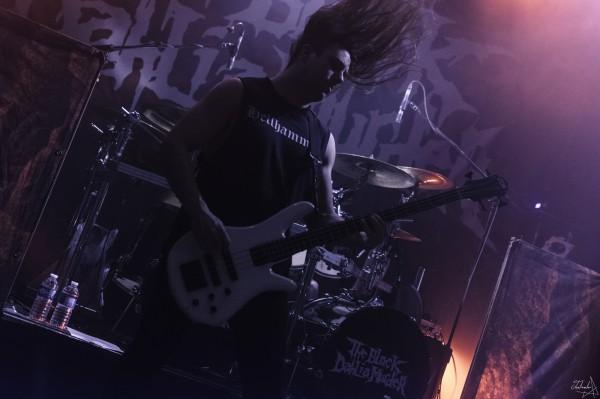 the black dahlia murder, death metal, 2019