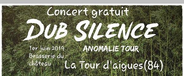 Dub Silence en concert le 1er juin