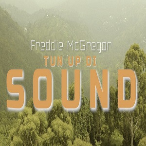 Freddie Mc Gregor - Turn Up Di Sound