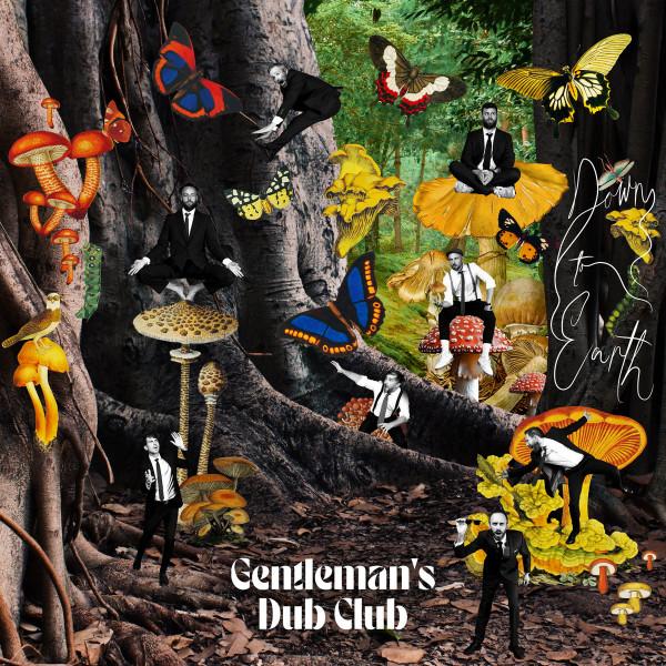 gentleman's dub club, down to earth, nouvel album