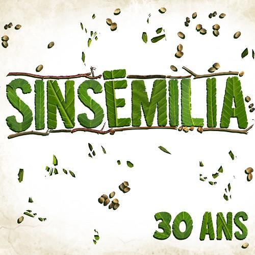 Artwork projet 30 ans - Sinsémilia